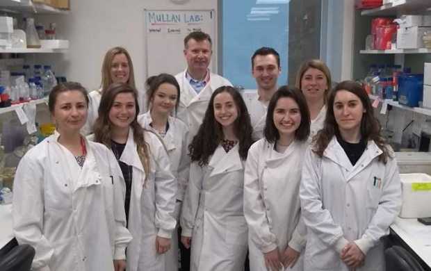 Dr Paul Mullan and team in the lab - working on new ways to find and treat aggressive breast cancers with poor responses to current chemotherapy treatments