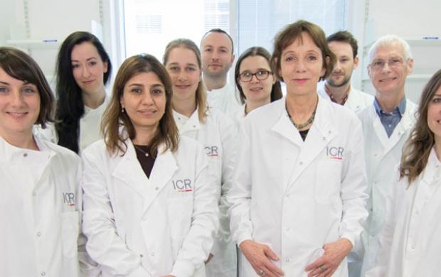Molecular cell biology team