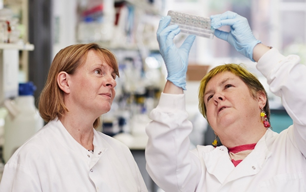 Finding ways to predict whether women will benefit from the chemoprevention drug tamoxifen