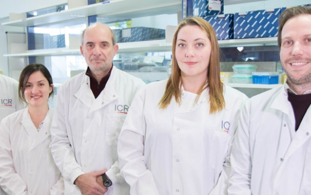 Drug Target Discovery team - Prof Spiros Linardopoulos's team