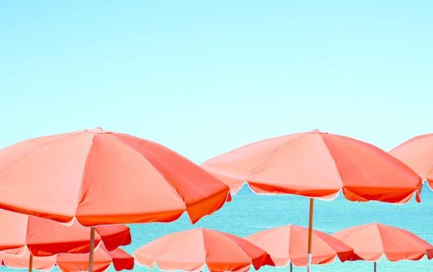 Orange beach umbrellas