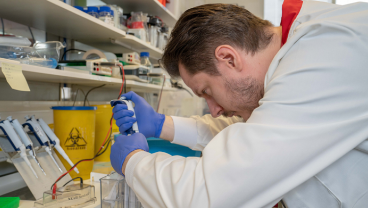 A breast cancer scientist carrying out research