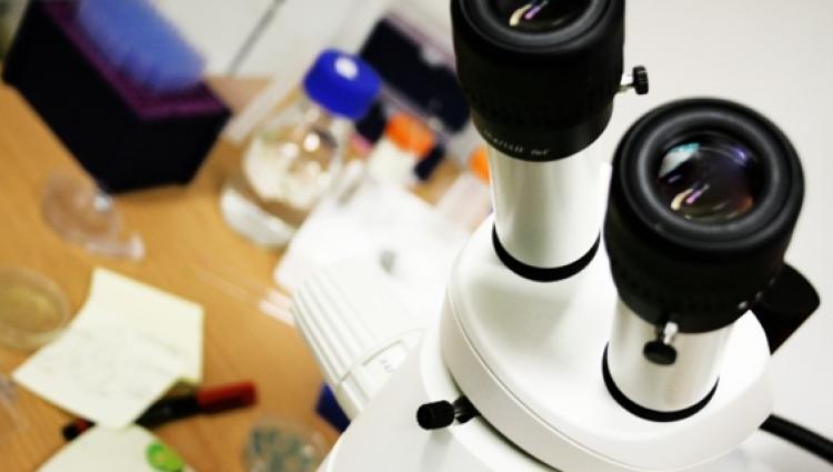 Microscope and scientific equipment