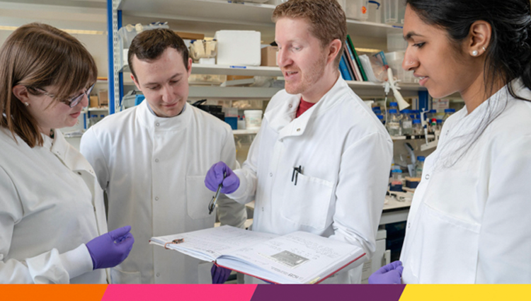 Breast cancer researchers working together