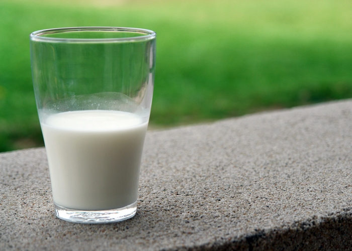 Do dairy products increase risk of breast cancer recurrence?