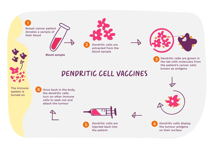Dendritic Cell Vaccines