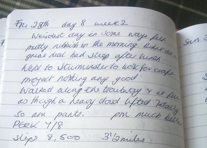 An extract from Fran's diary