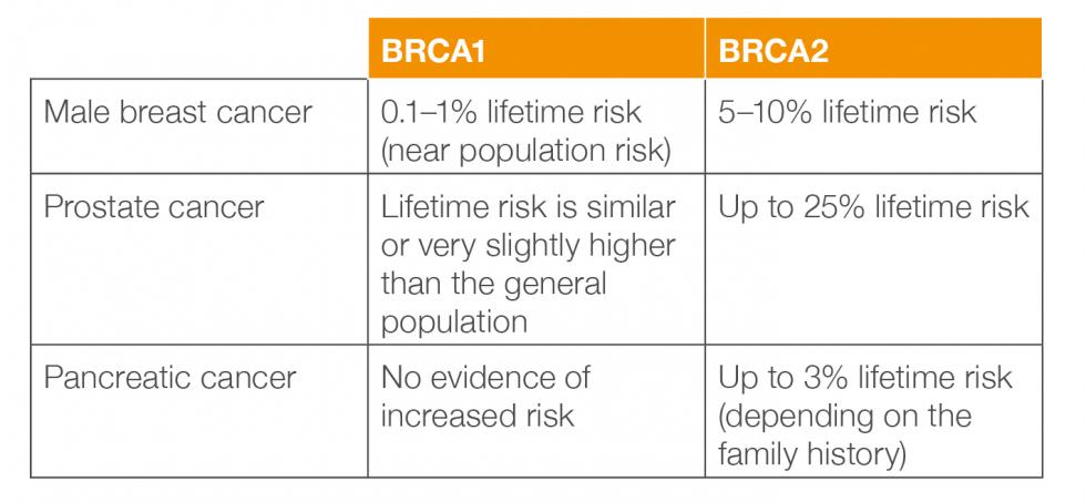 Cancer risks for men who carry a BRCA1/2 gene
