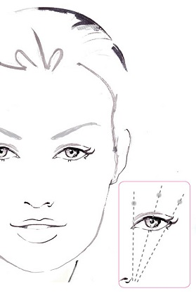 Plot the points of your eyebrow