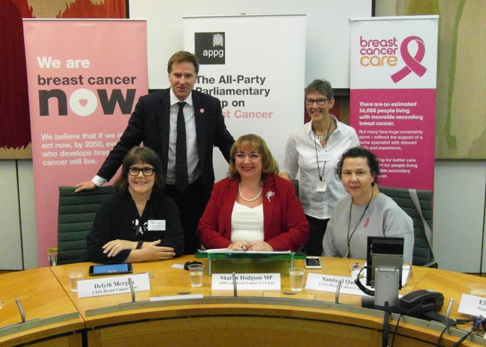 Campaigning in Westminster for better care